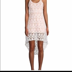 Haute Rogue lace high low dress